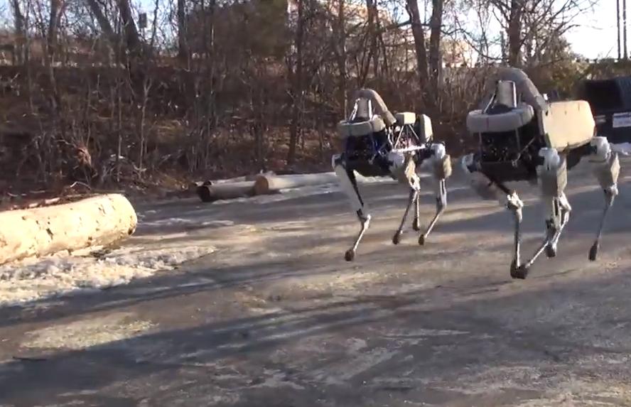 Googles Roboterhund steckt menschliche Tritte weg