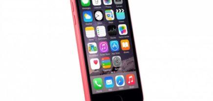 Panne könnte Absicht gewesen sein: Apple postet Fotos von neuem iPhone