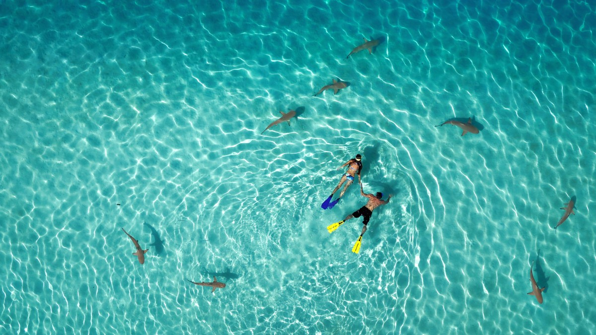 Dronies sind die neuen Selfies: Dronestagram kürt Foto-Gewinner