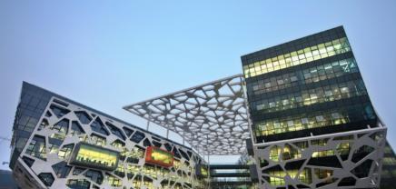Alibaba doch kein sicheres Pferd: Von der Vision zur Realität