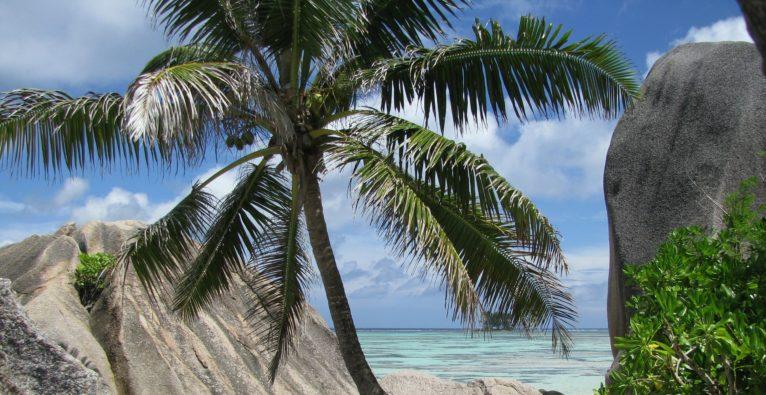 Die Domain .io gehört eigentlich einer Inselgruppe im Indischen Ozean.