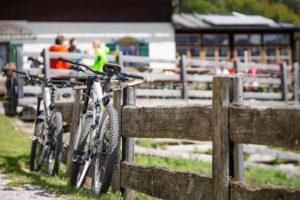 Im Sommer gibt es NeverLose auch für Mountainbikes. PowUnity
