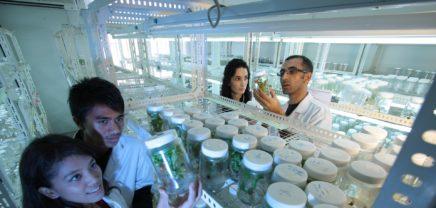 Studie: Biotech-Startups haben es in Wien schwer