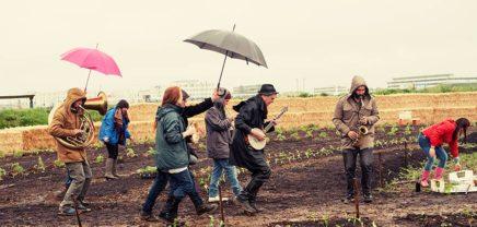Nachhaltig durchstarten: 4 Anlaufstellen für Green Startups in Österreich