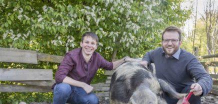 Gar nicht schweineteuer: Nahgenuss verkauft Bio-Fleisch im Netz