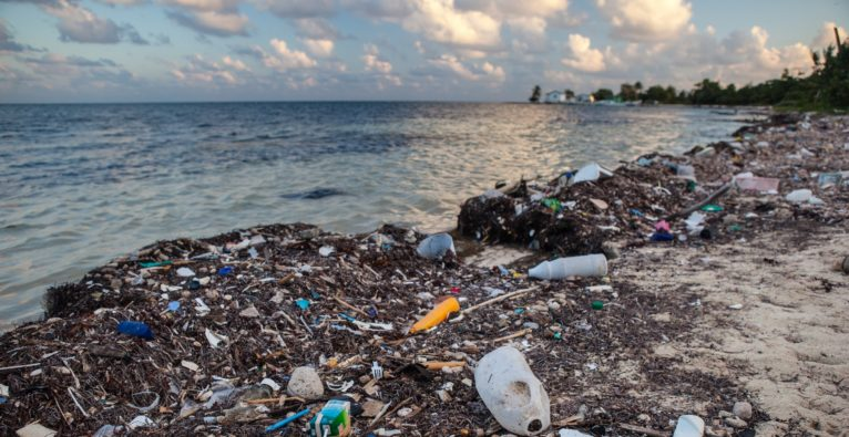 Wasser aus der Kugel statt Plastik im Meer