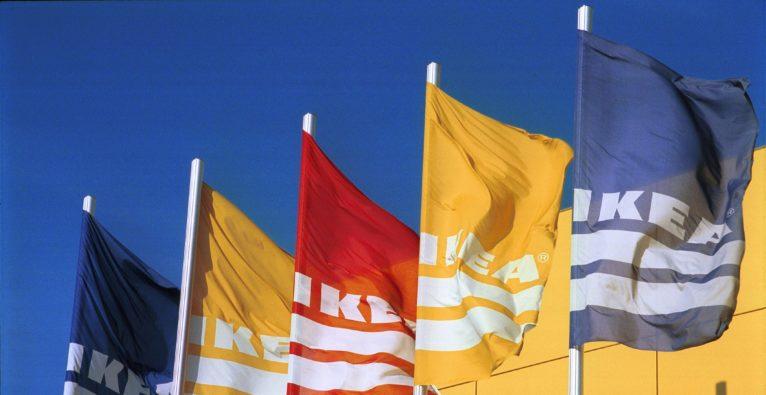 Ikea-Bootcamp: Wiener Startup Goodbag setzt sich durch!