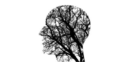 """""""Brainternet"""": Menschliches Gehirn erstmals live ins Internet gestreamt"""
