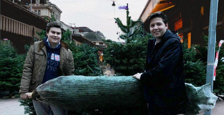 Taskrookie: Nikolaus Bauer und Constantin Weiland