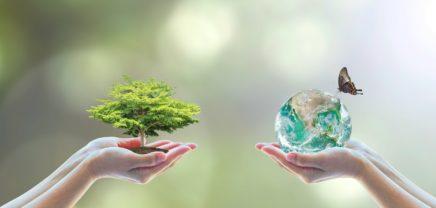 innovate4nature: WWF sucht Startups und Ideen