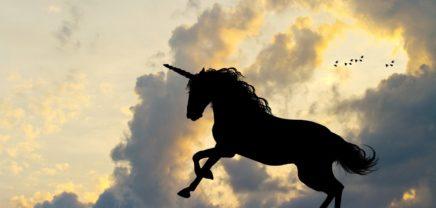 2017 brachte weltweit 57 neue Unicorns