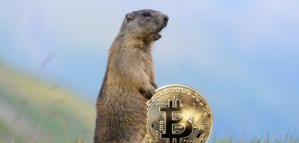 Die FOMO ist zurück: Bitcoin auf höchstem Stand seit Jänner 2018