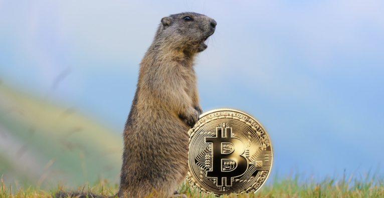 Bitcoin-Murmeltier - die FOMO ist zurück