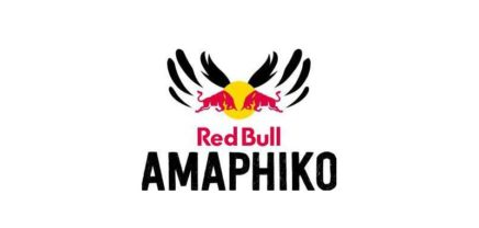 Call: Red Bull Amaphiko Fellowship Programm 2018