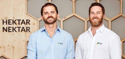 Hektar Nektar: Bienen-Marktplatz der Kununu-Gründer erhält 6-stelliges Investment
