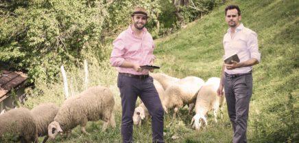 Sheepblue: 180.000 Euro Investment für Dienstplan-Startup