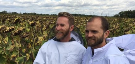 Wiener Bienen-Startup Hektar Nektar sammelt über Crowd-Invest-Kampagne 200.000 Euro