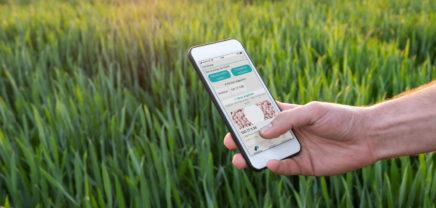 Farmhedge: So sollen Österreichs Bauern von einer irischen App profitieren