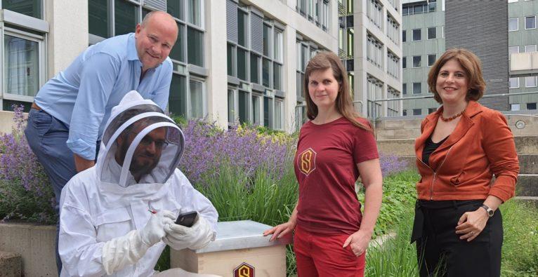 SuperBee Keeper - mit AR gegen die Pandemie im Bienenstock