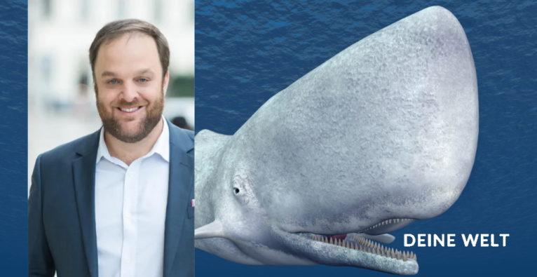 Mic Hirschbrich beschreibt, was Unternehmen von Moby Dick lernen können