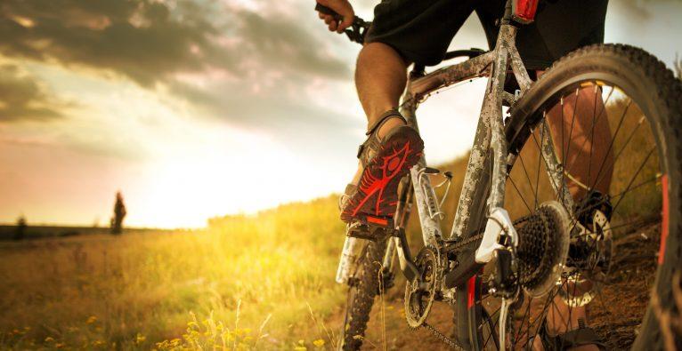 Zu Signa Sports United gehörten unter anderem die Online-Shops Fahrrad.de und Bikester