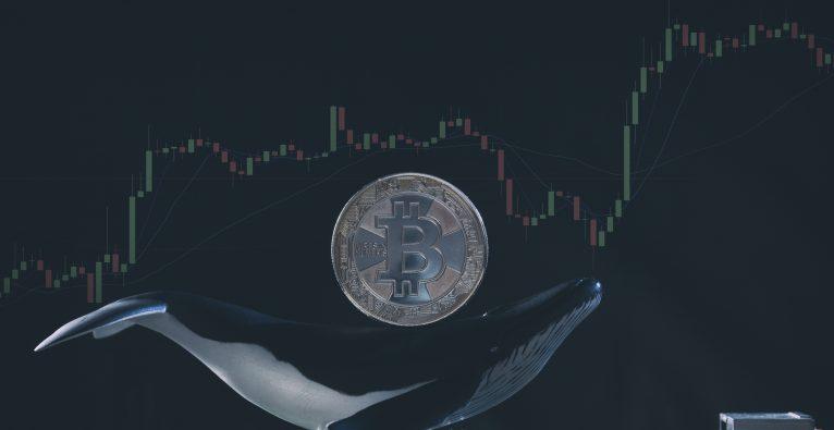Vergleichen Sie Crypto-Preise uber den Austausch